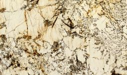 Blanc-Du-Blanc-3CM-Polished-031519.03129-77x130-slabs-1-6-Close-Up.jpg